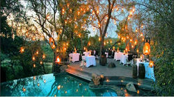 Singita Lebombo Lodge晚餐