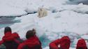 【仅此一团·北极熊岛】银海银云探险号北极熊王国挪威峡湾伦敦爱丁堡19天17晚 · 斯瓦尔巴群岛+峡湾巡游+登伦敦眼+奢华米其林餐+英国火车体验