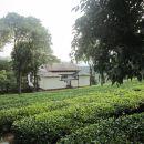普洱茶博覽苑酒店