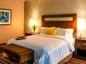 歡朋套房酒店及丹佛市區會議中心(Hampton Inn & Suites Denver Downtown Convention Center)