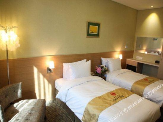 首爾天空花園酒店明洞中心店(Hotel Skypark Central Myeongdong Seoul)標準雙床間
