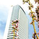滄州金獅國際酒店