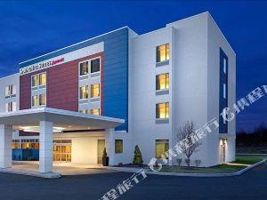 布法羅機場 SpringHill Suites 酒店(SpringHill Suites Buffalo Airport)