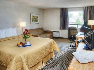 舒適中城酒店(Comfort Inn Midtown)