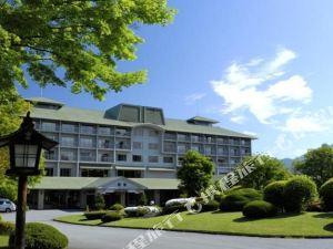 富士河口湖富士山景酒店(Fuji-View Hotel Fujikawaguchiko)