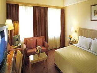 首爾貝斯特韋斯特精品花園精品酒店(Best Western Premier Seoul Garden Hotel)Superior Double