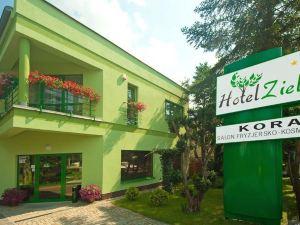 澤羅尼酒店(Hotel Zielony)