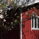帕斯拉騰紫色房子住宿加早餐酒店(Lilla Huset på Slätten B&B)
