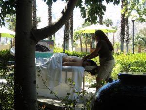 常春藤棕櫚Spa度假酒店(Ivy Palm Resort and Spa)