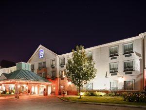 多倫多機場貝斯特韋斯特優質酒店(Best Western Plus Travel Hotel Toronto Airport)