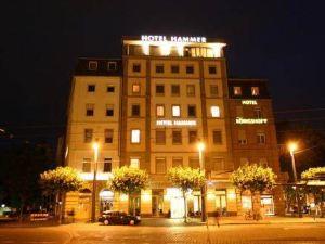 尼奇塔勞赫翰墨拓普酒店(Top Hotel Hammer-Nichtraucherhotel)