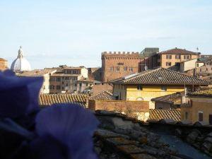 卡薩馬斯塔奇酒店(A Casa Mastacchi)
