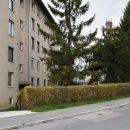 多雷尼公寓(Apartment Dolenjska)