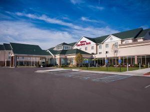 聖路易斯機場希爾頓花園酒店(Hilton Garden Inn St. Louis Airport)