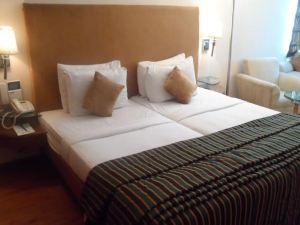 班加拉歐瑞斯酒店(Ohris Banjara)