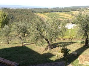 法勒別墅(Villa Faule)