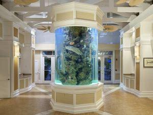 格蘭德基度假村希爾頓逸林酒店(DoubleTree by Hilton Grand Key Resort)
