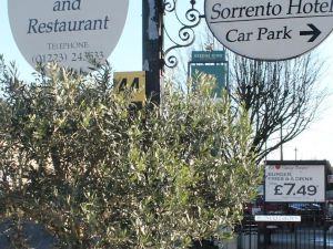 索倫托酒店&餐廳(Sorrento Hotel & Restaurant)
