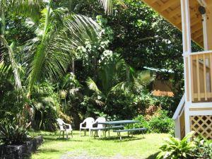 卡拉帕納熔巖流附近海濱度假屋(Oceanfront Cottage Near The Kalapana Lava Flows)