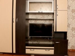 pr. 澤琴斯克霍公寓(Apartment on pr. Dzerzhinskogo)
