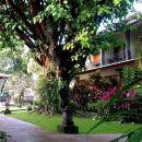 日惹普瑞潘格蘭酒店(Puri Pangeran Hotel Yogyakarta)