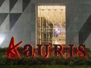 奧利司酒店(Aauris)