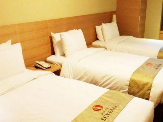 首爾天空花園酒店明洞中心店(Hotel Skypark Central Myeongdong Seoul)三人房