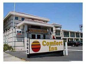 帕洛阿爾托舒適酒店(Comfort Inn Palo Alto)