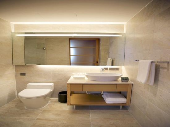 喜普樂吉酒店首爾東大門(Sotetsu Hotels the Splaisir Seoul Dongdaemun)豪華雙床房