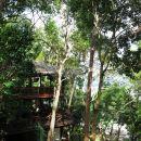 哥打京那巴魯馬里馬里塞潘加爾小屋酒店(Mari Mari Sepanggar Lodge Kota Kinabalu)