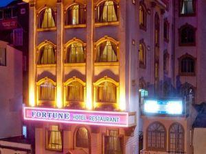 戴洛財富酒店(Fortune - Dai Loi Hotel)