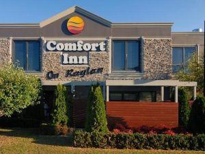 拉格倫舒適酒店(Comfort Inn on Raglan)