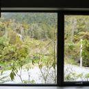法蘭茲約瑟夫樹梢旅館(Franz Josef Treetops)