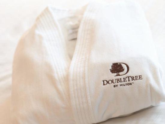 新山希爾頓逸林酒店(Doubletree by Hilton Johor Bahru)特大床房