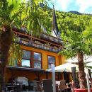 綠樹酒店(Seehotel Gruner Baum)