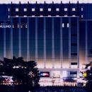 莫利諾新百合丘酒店(Hotel Molino Shin Yuri)