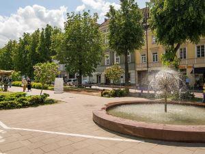 Main Vokiečių street Vilnius Old City Apartments