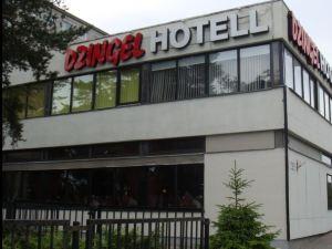 迪曾格爾酒店(Hotel Dzingel)