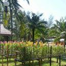 考拉基布哥考島海灘溫泉度假村(Takaupa Kib Kho Khao Island Beach Resort)