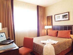 托萊多歐洲之星酒店(Eurostars Toledo)