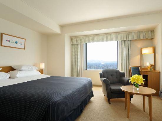 札幌艾米西亞酒店(Hotel Emisia Sapporo)高級雙人床間中層