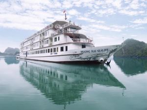 馨海海洋生物郵輪酒店(Huong Hai Sealife Cruise)