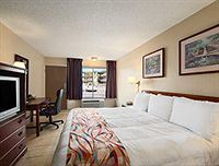 坦帕北布希花園戴斯酒店(Days Inn Tampa North of Busch Gardens)