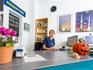 太空學校與在線酒店(Space School & Online Hotel)