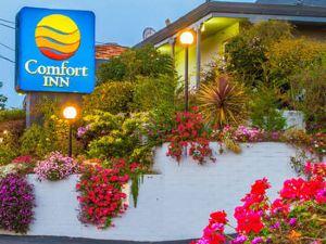 蒙特里灣舒適酒店(Comfort Inn Monterey Bay)