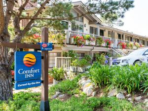 卡梅爾海岸舒適酒店(Comfort Inn Carmel by The Sea)