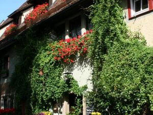 艾爾弗拉恩基斯克葡萄酒館酒店(Altfraenkische Weinstube)