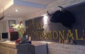 加莫納爾賓館(El Gamonal)