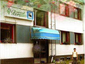 博瑞李斯賓館(Guesthouse Borealis)