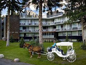 包湖景觀酒店(Bow View Lodge)
